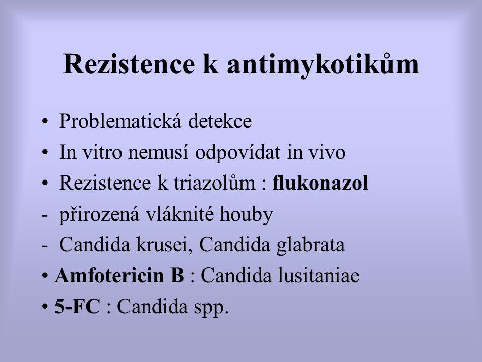 Rezistence k antimykotikům Problematická detekce In vitro nemusí odpovídat in vivo Rezistence k triazolům : flukonazol -přirozená vláknité houby -Cand