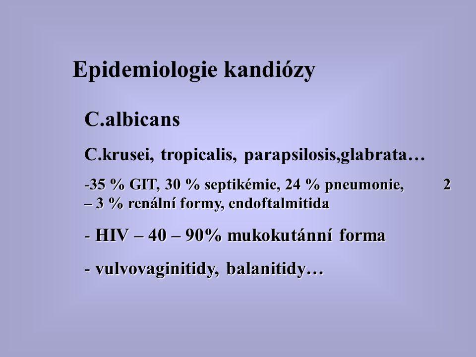 Epidemiologie kandiózy C.albicans C.krusei, tropicalis, parapsilosis,glabrata… -35 % GIT, 30 % septikémie, 24 % pneumonie, 2 – 3 % renální formy, endo