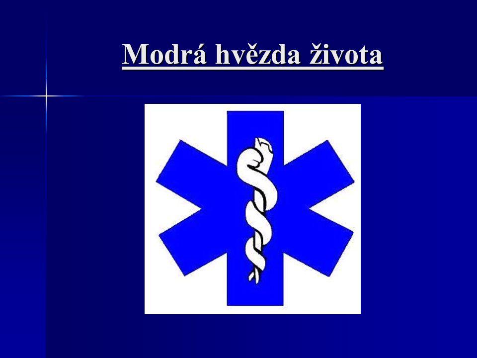 Další druhy záchranné služby LZS – letecká záchranná služba VZS – vodní záchranná služba Báňská záchranná služba Speleologická záchranná služba Horská služba