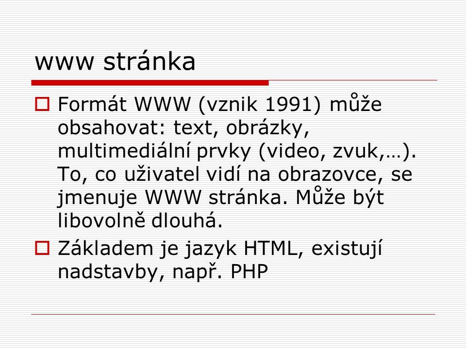 www stránka  Formát WWW (vznik 1991) může obsahovat: text, obrázky, multimediální prvky (video, zvuk,…). To, co uživatel vidí na obrazovce, se jmenuj