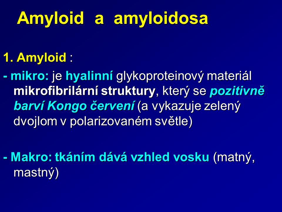 Amyloid a amyloidosa 1. Amyloid : - mikro: je hyalinní glykoproteinový materiál mikrofibrilární struktury, který se pozitivně barví Kongo červení (a v