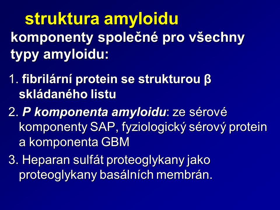Typy amyloidu 1.AL prekursor: variabilní část lehkého řetězce imunoglobulinu, častěji lambda.