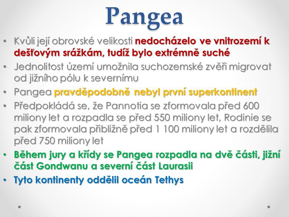 Pangea Kvůli její obrovské velikosti nedocházelo ve vnitrozemí k dešťovým srážkám, tudíž bylo extrémně suché Kvůli její obrovské velikosti nedocházelo