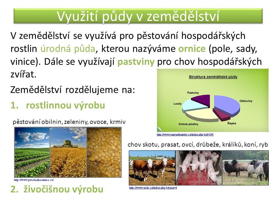 Využití půdy v zemědělství V zemědělství se využívá pro pěstování hospodářských rostlin úrodná půda, kterou nazýváme ornice (pole, sady, vinice). Dále