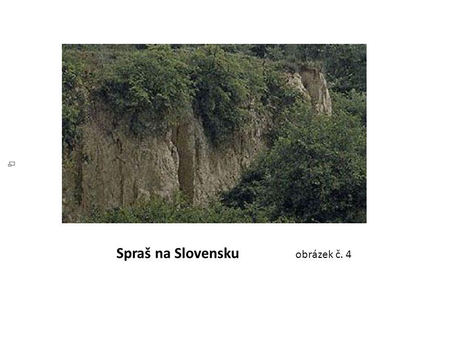 Spraš na Slovensku obrázek č. 4