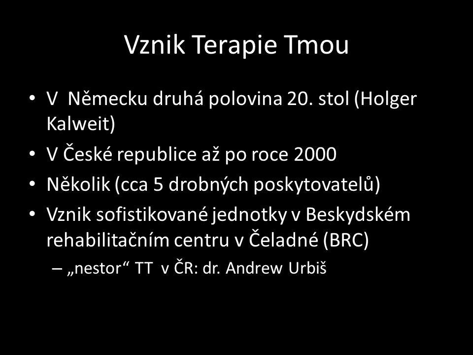 Vznik Terapie Tmou V Německu druhá polovina 20. stol (Holger Kalweit) V České republice až po roce 2000 Několik (cca 5 drobných poskytovatelů) Vznik s