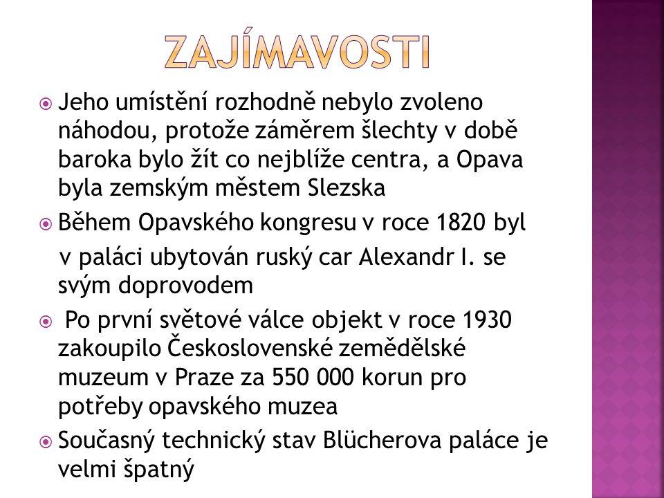  Jeho umístění rozhodně nebylo zvoleno náhodou, protože záměrem šlechty v době baroka bylo žít co nejblíže centra, a Opava byla zemským městem Slezsk
