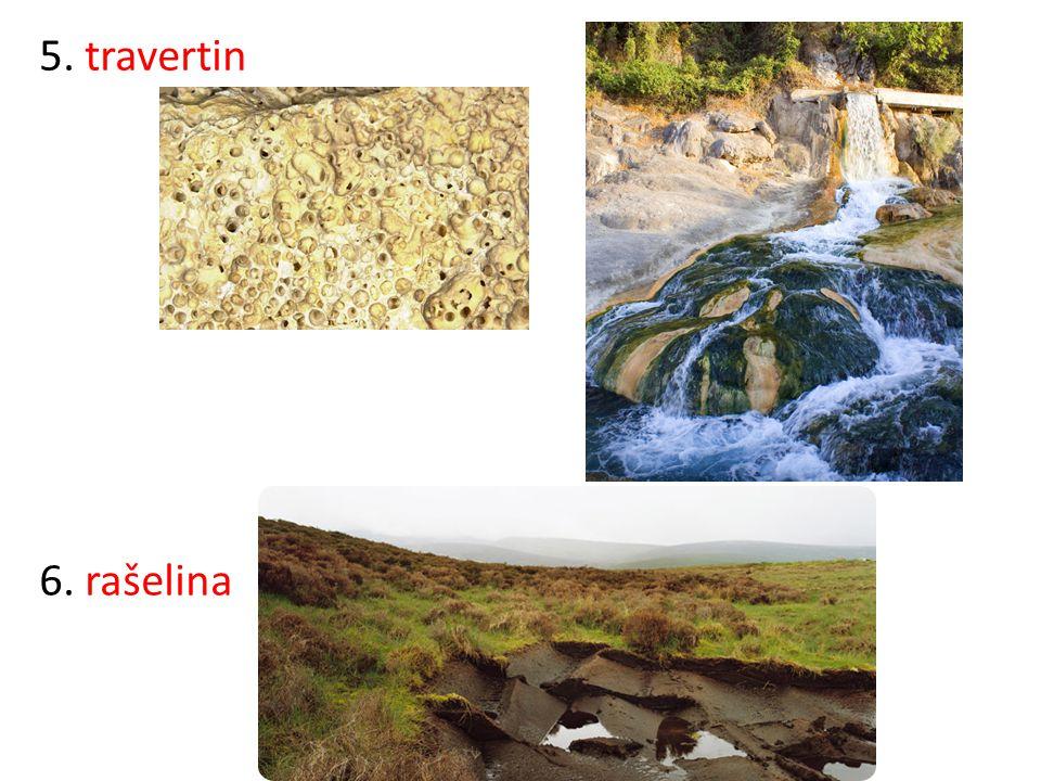 Poznej horniny podle jejich výskytu: 1.Podkrušnohorská pánev: .