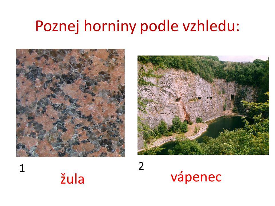 Poznej horniny podle vzhledu: 1 2 žula vápenec