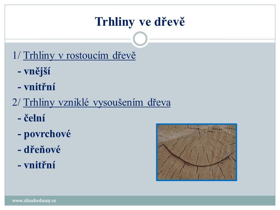 Trhliny ve dřevě www.zlinskedumy.cz 1/ Trhliny v rostoucím dřevě - vnější - vnitřní 2/ Trhliny vzniklé vysoušením dřeva - čelní - povrchové - dřeňové