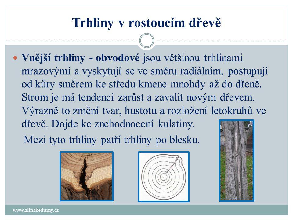 Trhliny v rostoucím dřevě – vnitřní trhliny www.zlinskedumy.cz Dřeňové - jednoduché, lomené, křížové Jedná se o radiální trhliny, které vycházejí od dřeně a mají značný rozsah v délce sortimentu.
