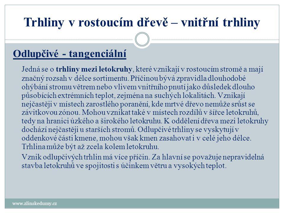 Ukázka odlupčivých trhlin www.zlinskedumy.cz
