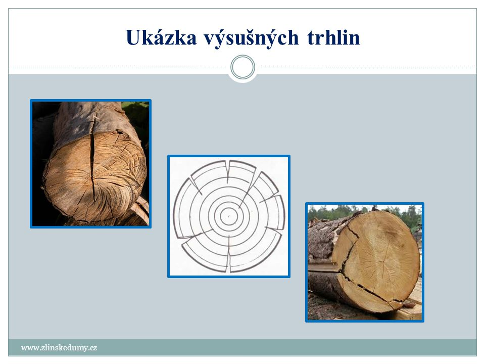 Kontrolní test www.zlinskedumy.cz 1.Na jaké dvě skupiny trhliny ve dřevě dělíme.
