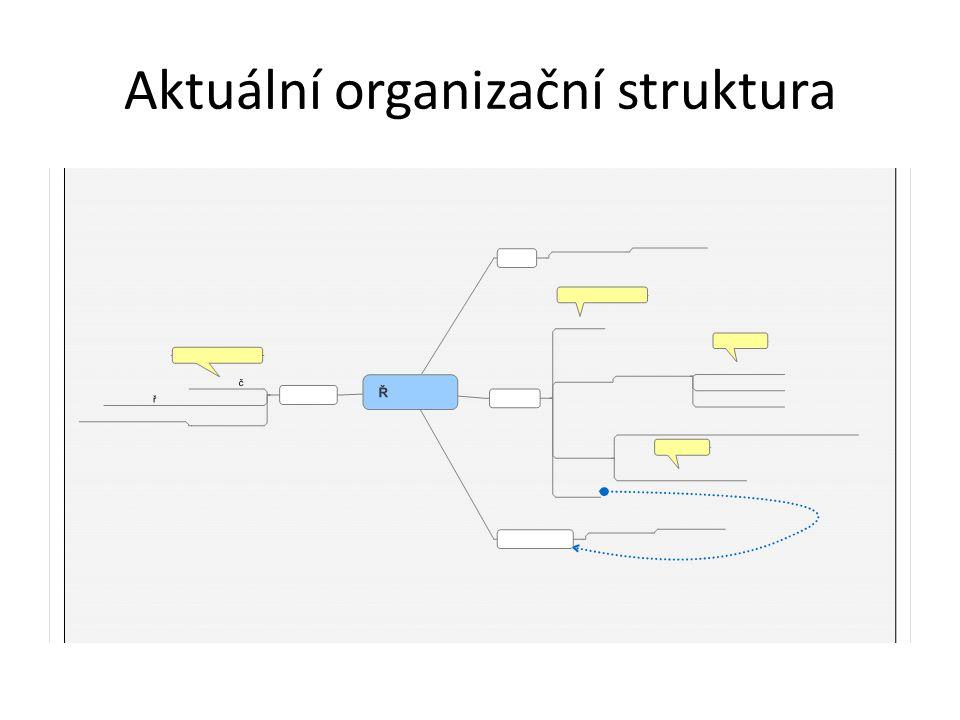 Aktuální organizační struktura