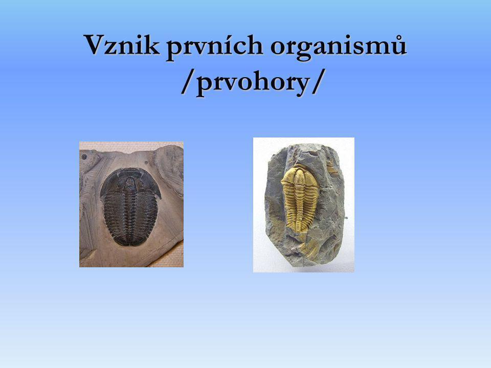 Vznik prvních organismů /prvohory/