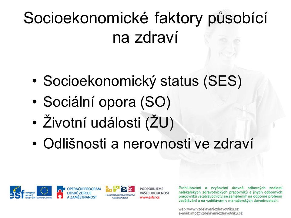 Socioekonomický status Pozice jedince (domácnosti) v sociálním zařazení (stratifikace, rozvrstvení).