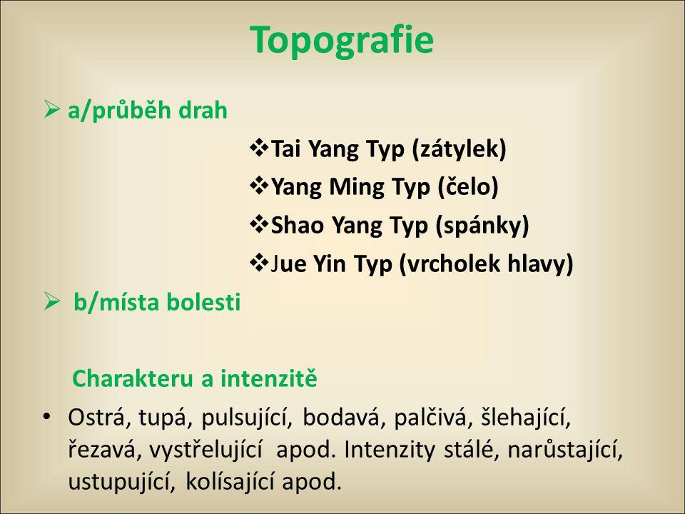 Topografie  a/průběh drah  Tai Yang Typ (zátylek)  Yang Ming Typ (čelo)  Shao Yang Typ (spánky)  Jue Yin Typ (vrcholek hlavy)  b/místa bolesti C