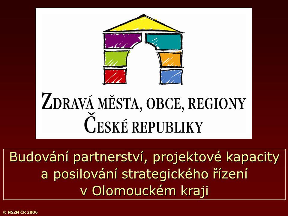 © NSZM ČR 2006 Budování partnerství, projektové kapacity a posilování strategického řízení v Olomouckém kraji