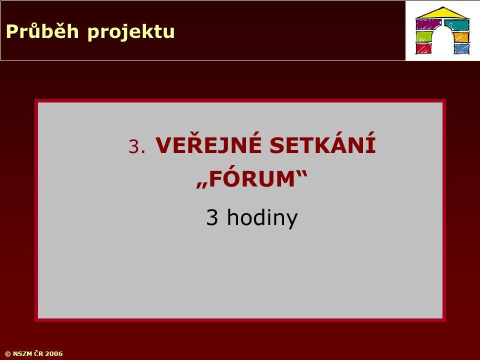 """© NSZM ČR 2006 3. VEŘEJNÉ SETKÁNÍ """"FÓRUM"""" 3 hodiny Průběh projektu"""