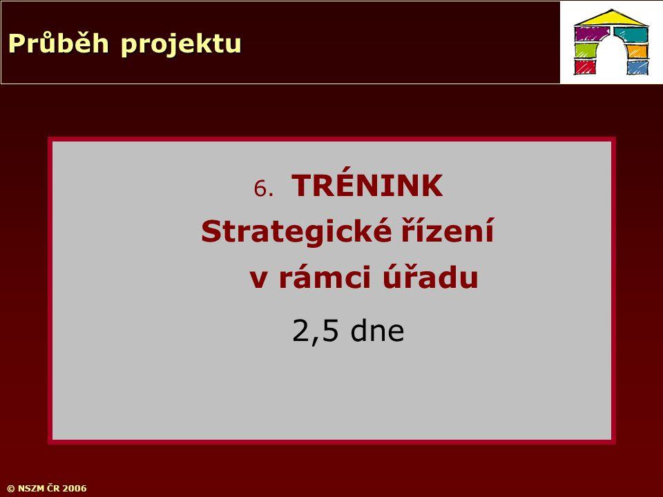 © NSZM ČR 2006 6. TRÉNINK Strategické řízení v rámci úřadu 2,5 dne Průběh projektu
