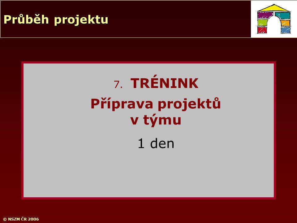 © NSZM ČR 2006 7. TRÉNINK Příprava projektů v týmu 1 den Průběh projektu