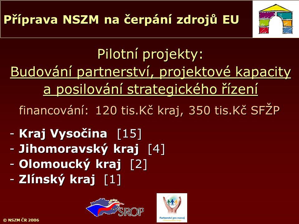 © NSZM ČR 2006 Pilotní projekty: Budování partnerství, projektové kapacity a posilování strategického řízení Příprava NSZM na čerpání zdrojů EU - Kraj