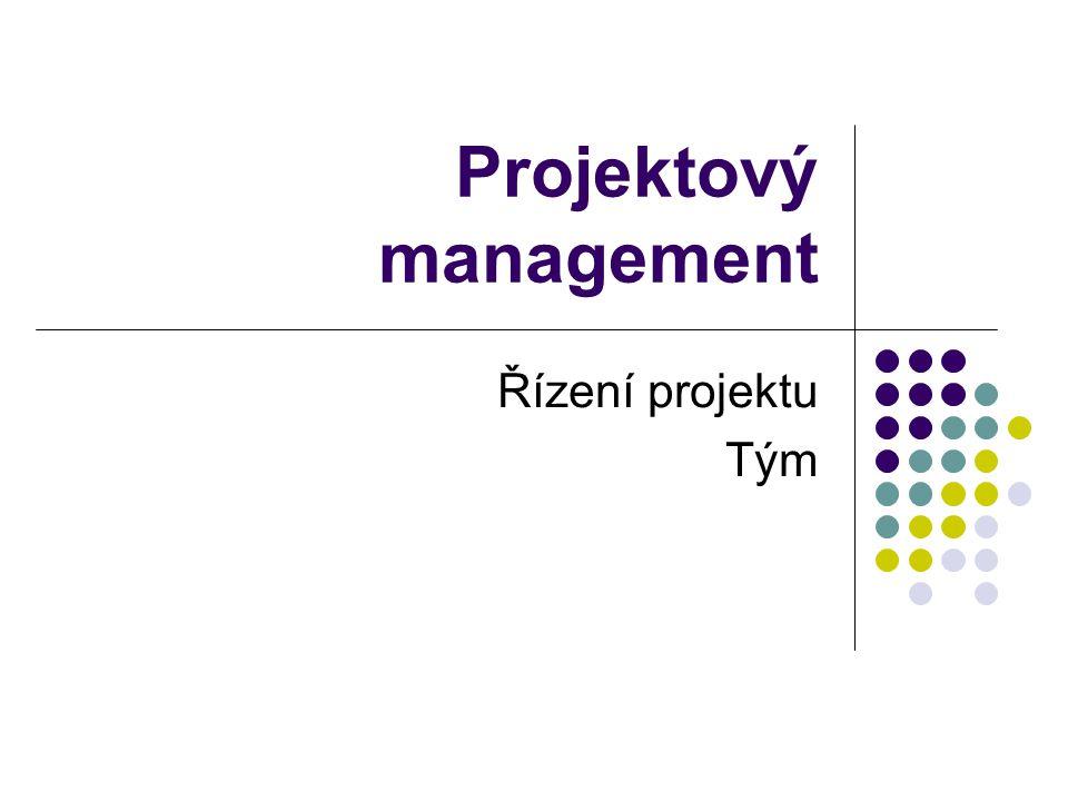 Projektový management Řízení projektu Tým