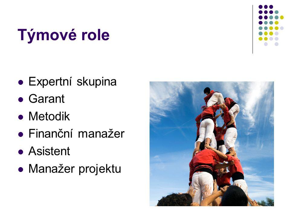 Týmové role Expertní skupina Garant Metodik Finanční manažer Asistent Manažer projektu