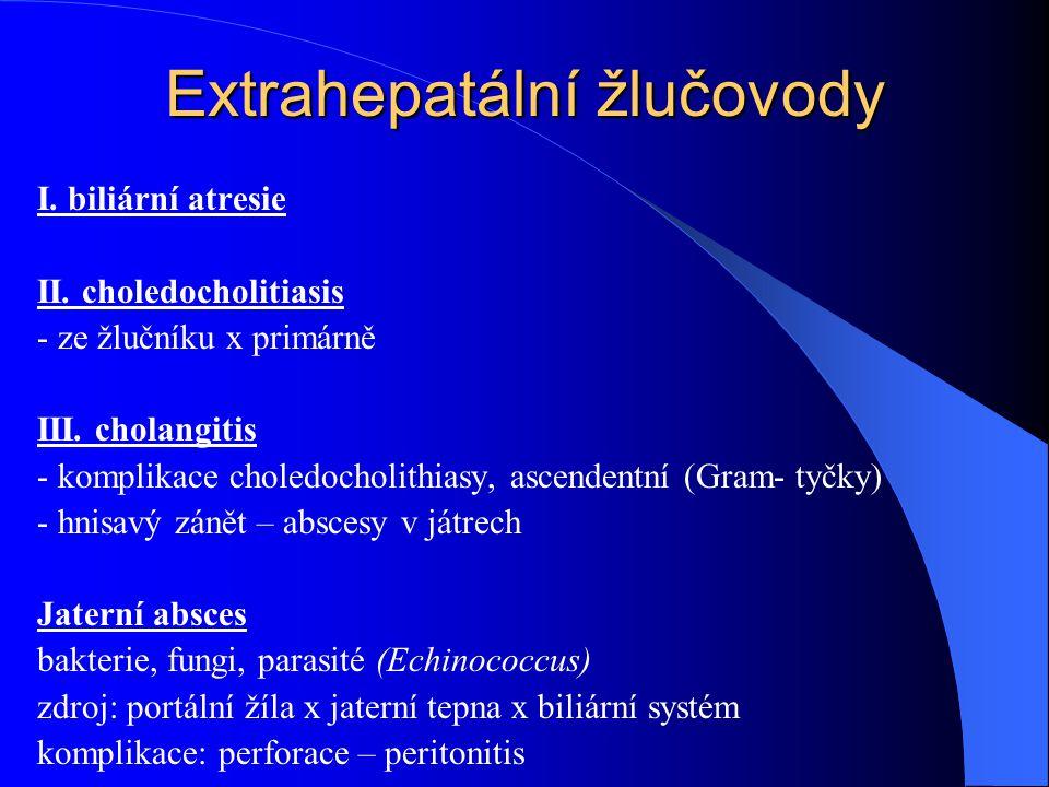 Extrahepatální žlučovody I. biliární atresie II. choledocholitiasis - ze žlučníku x primárně III. cholangitis - komplikace choledocholithiasy, ascende