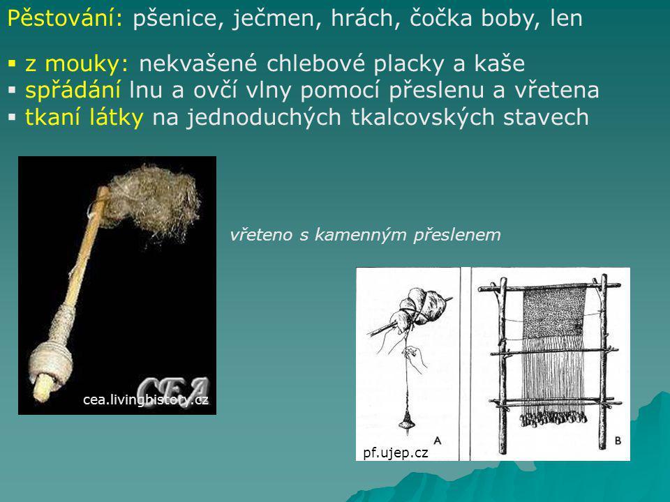 Do českých zemí přišli první zemědělci okolo poloviny 6.