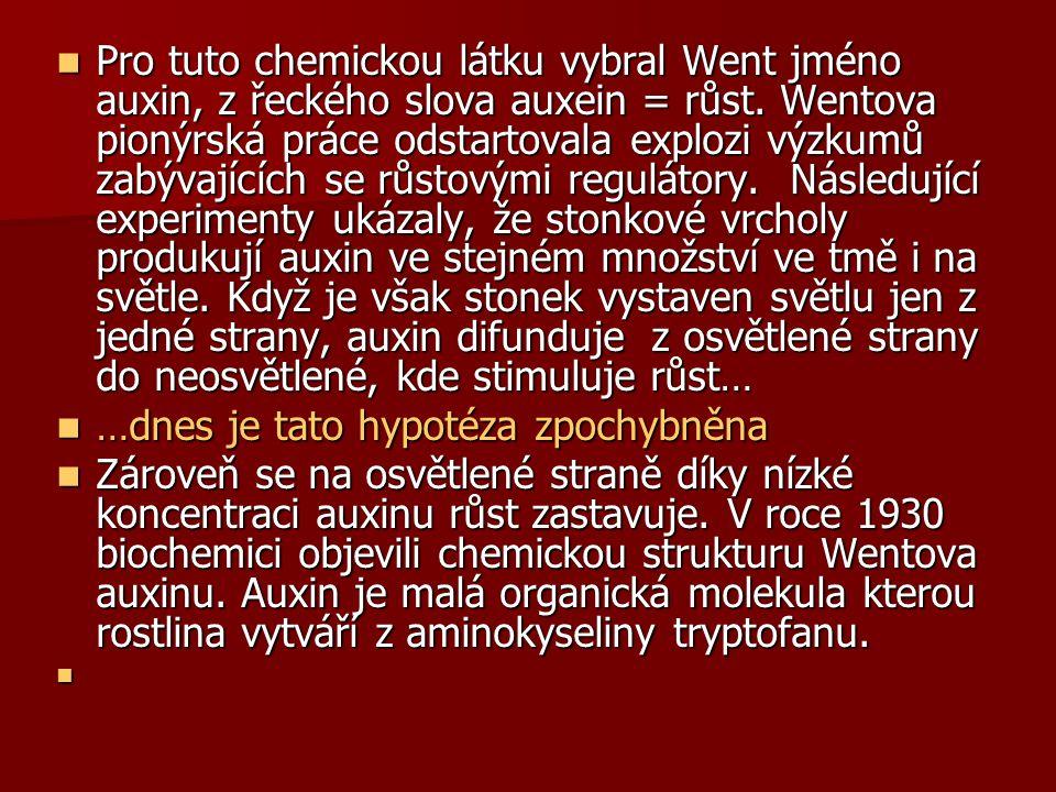 Pro tuto chemickou látku vybral Went jméno auxin, z řeckého slova auxein = růst. Wentova pionýrská práce odstartovala explozi výzkumů zabývajících se