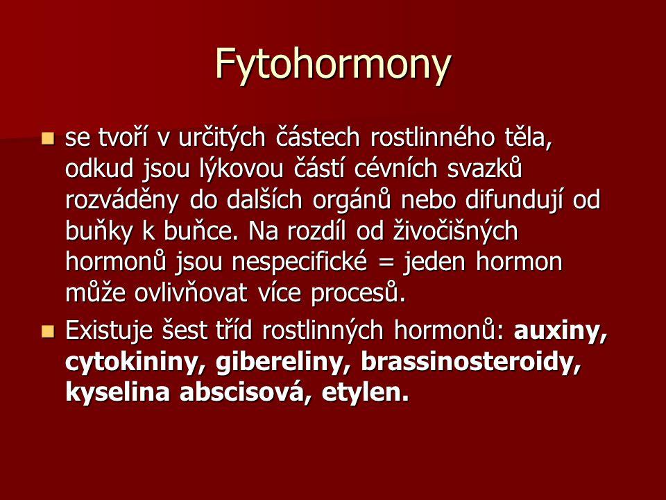 Fytohormony se tvoří v určitých částech rostlinného těla, odkud jsou lýkovou částí cévních svazků rozváděny do dalších orgánů nebo difundují od buňky k buňce.