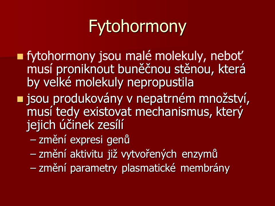Fytohormony proniknout buněčnou stěnou, která by velké molekuly nepropustila fytohormony jsou malé molekuly, neboť musí proniknout buněčnou stěnou, která by velké molekuly nepropustila jsou produkovány v nepatrném množství, musí tedy existovat mechanismus, který jejich účinek zesílí jsou produkovány v nepatrném množství, musí tedy existovat mechanismus, který jejich účinek zesílí –změní expresi genů –změní aktivitu již vytvořených enzymů –změní parametry plasmatické membrány