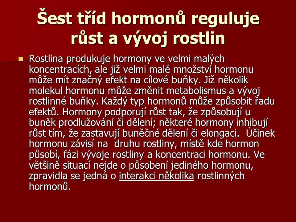 Šest tříd hormonů reguluje růst a vývoj rostlin Rostlina produkuje hormony ve velmi malých koncentracích, ale již velmi malé množství hormonu může mít značný efekt na cílové buňky.