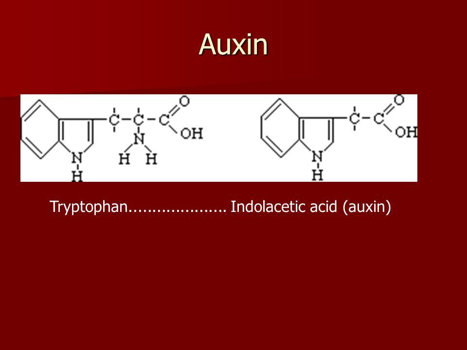 Auxin Tryptophan..................... Indolacetic acid (auxin)