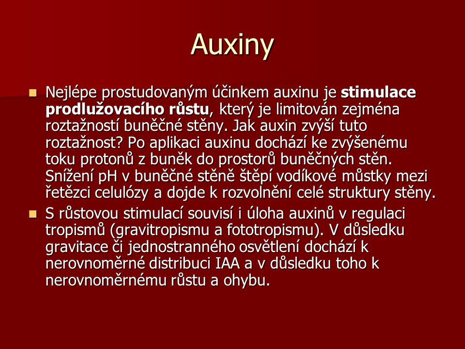 Auxiny Nejlépe prostudovaným účinkem auxinu je stimulace prodlužovacího růstu, který je limitován zejména roztažností buněčné stěny.