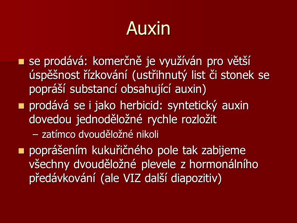 Auxin se prodává: komerčně je využíván pro větší úspěšnost řízkování (ustřihnutý list či stonek se popráší substancí obsahující auxin) se prodává: komerčně je využíván pro větší úspěšnost řízkování (ustřihnutý list či stonek se popráší substancí obsahující auxin) prodává se i jako herbicid: syntetický auxin dovedou jednoděložné rychle rozložit prodává se i jako herbicid: syntetický auxin dovedou jednoděložné rychle rozložit –zatímco dvouděložné nikoli poprášením kukuřičného pole tak zabijeme všechny dvouděložné plevele z hormonálního předávkování (ale VIZ další diapozitiv) poprášením kukuřičného pole tak zabijeme všechny dvouděložné plevele z hormonálního předávkování (ale VIZ další diapozitiv)