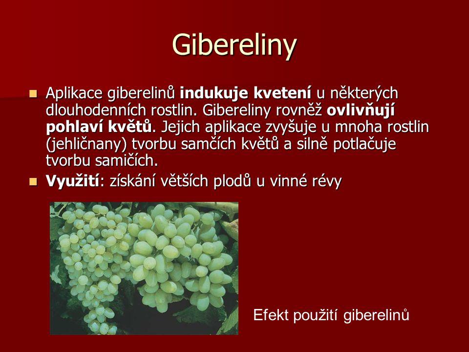 Gibereliny Aplikace giberelinů indukuje kvetení u některých dlouhodenních rostlin. Gibereliny rovněž ovlivňují pohlaví květů. Jejich aplikace zvyšuje