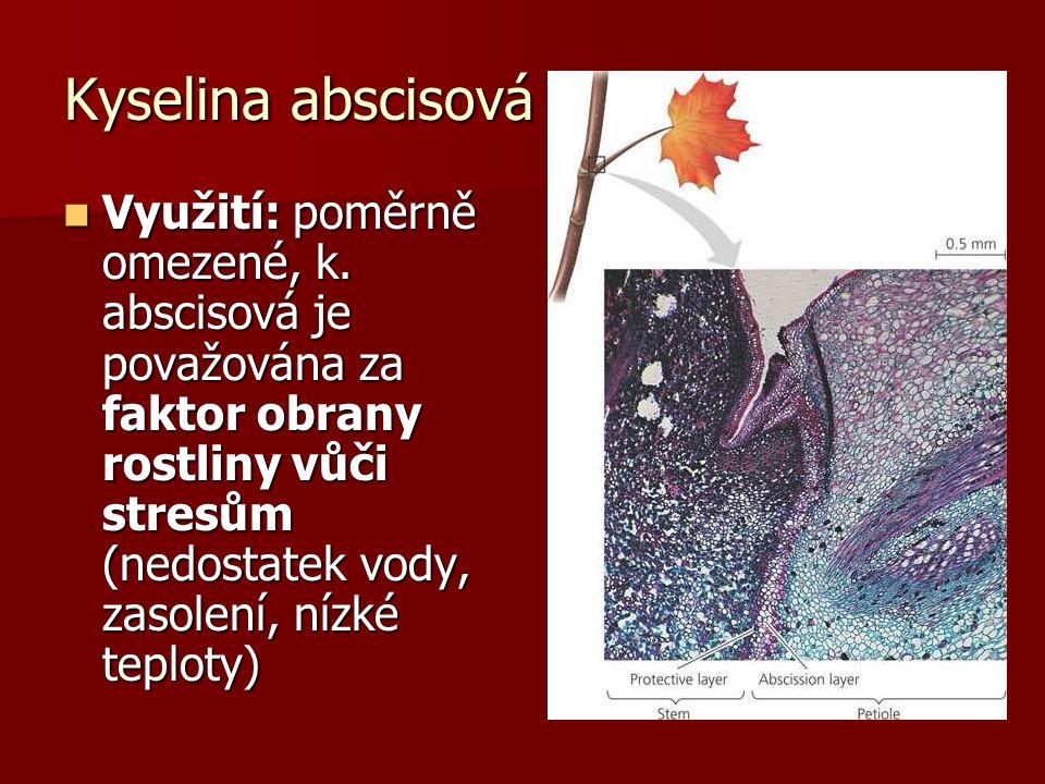 Kyselina abscisová Využití: poměrně omezené, k. abscisová je považována za faktor obrany rostliny vůči stresům (nedostatek vody, zasolení, nízké teplo