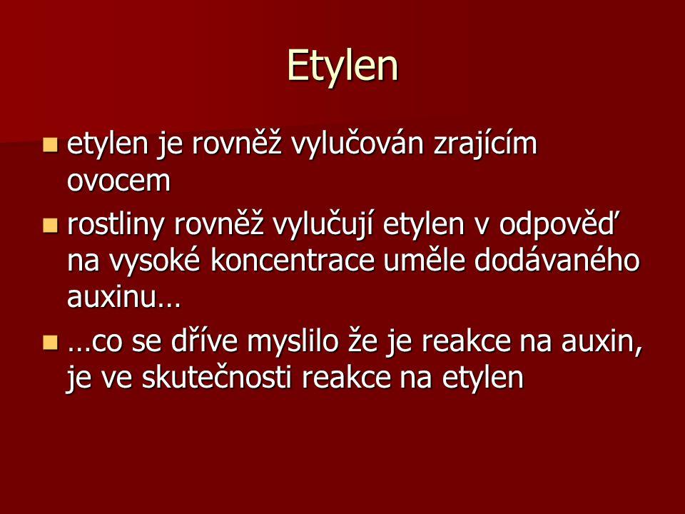 Etylen etylen je rovněž vylučován zrajícím ovocem etylen je rovněž vylučován zrajícím ovocem rostliny rovněž vylučují etylen v odpověď na vysoké koncentrace uměle dodávaného auxinu… rostliny rovněž vylučují etylen v odpověď na vysoké koncentrace uměle dodávaného auxinu… …co se dříve myslilo že je reakce na auxin, je ve skutečnosti reakce na etylen …co se dříve myslilo že je reakce na auxin, je ve skutečnosti reakce na etylen