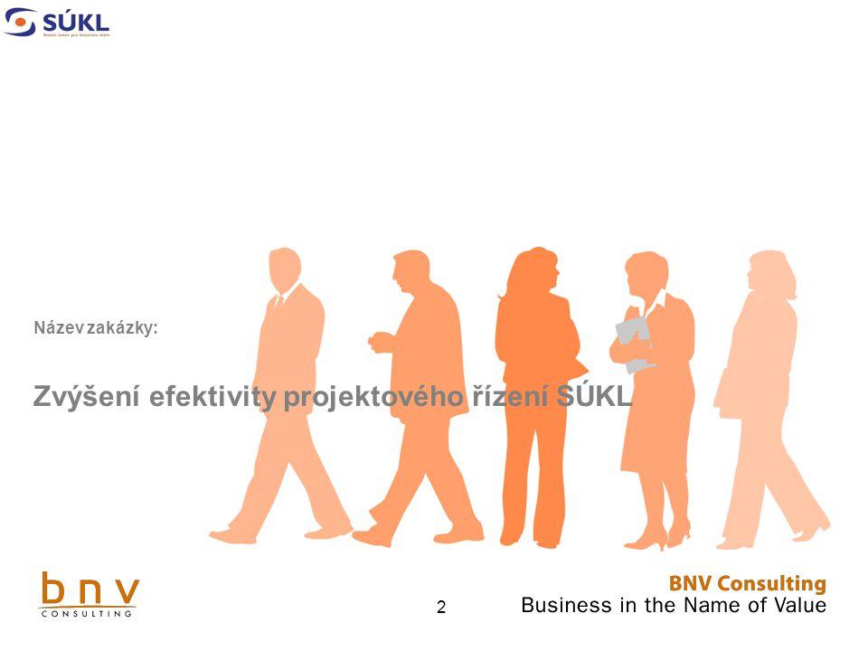 """3 Obsah Nabídka – """"Zvýšení efektivity projektového řízení SÚKL"""