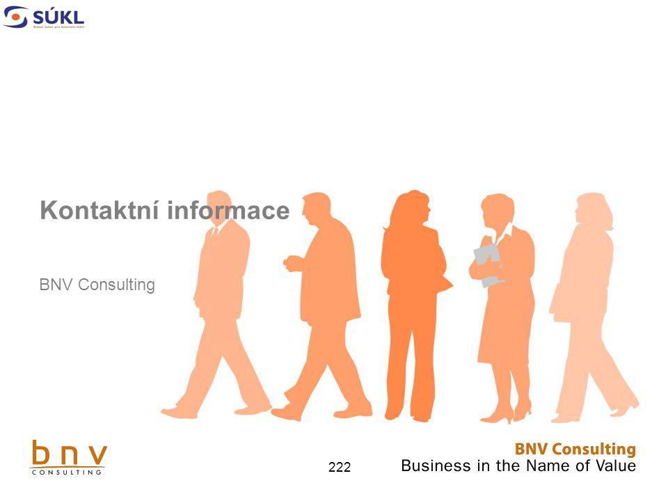222 Kontaktní informace BNV Consulting