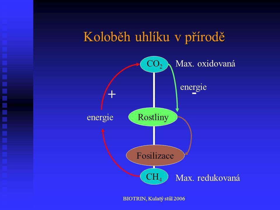 BIOTRIN, Kulatý stůl 2006 Koloběh uhlíku v přírodě CH 4 CO 2 Max. oxidovaná Max. redukovaná energie + - Rostliny Fosilizace