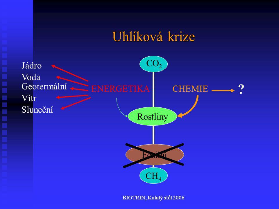 BIOTRIN, Kulatý stůl 2006 Uhlíková krize CH 4 CO 2 ENERGETIKACHEMIE Fosilní Rostliny Jádro Voda Geotermální Vítr Sluneční ?