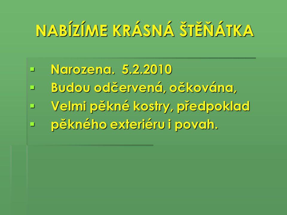 Kontakt Kontakt  Kristina Fiedlerová  tel..606 720 887  tel..