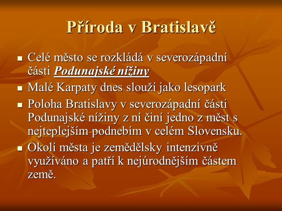 Příroda v Bratislavě Celé město se rozkládá v severozápadní části Podunajské nížiny Celé město se rozkládá v severozápadní části Podunajské nížiny Malé Karpaty dnes slouží jako lesopark Malé Karpaty dnes slouží jako lesopark Poloha Bratislavy v severozápadní části Podunajské nížiny z ní činí jedno z měst s nejteplejším podnebím v celém Slovensku.