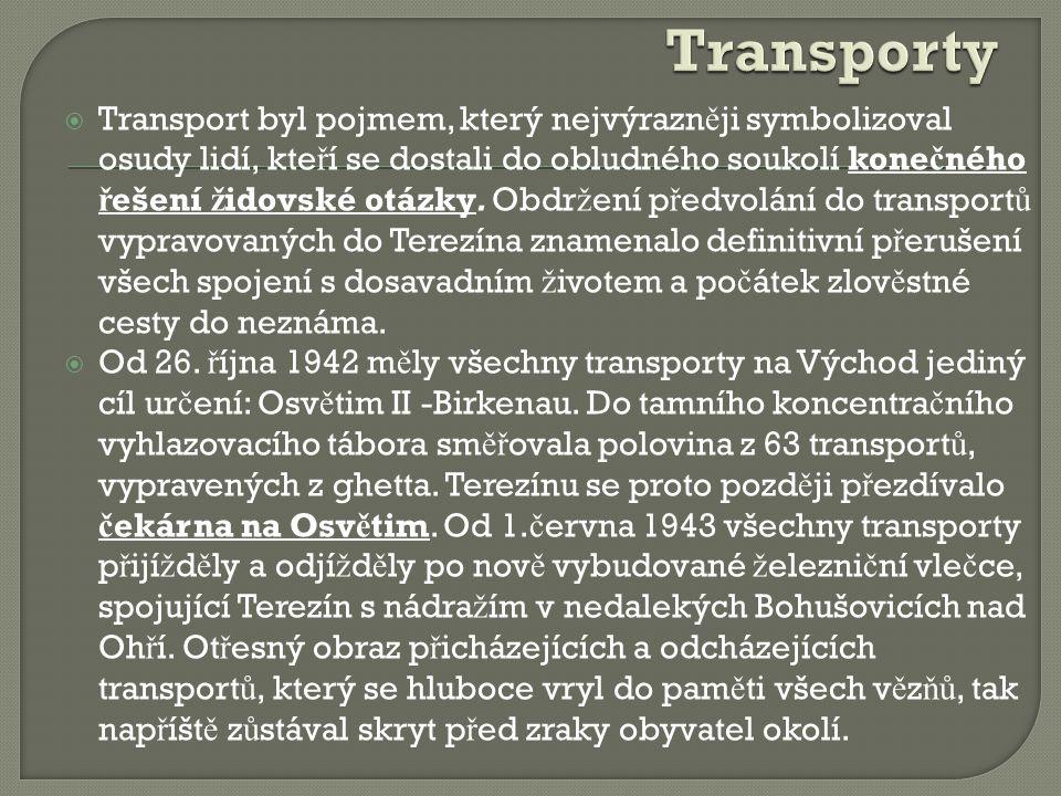  Transport byl pojmem, který nejvýrazn ě ji symbolizoval osudy lidí, kte ř í se dostali do obludného soukolí kone č ného ř ešení ž idovské otázky. Ob
