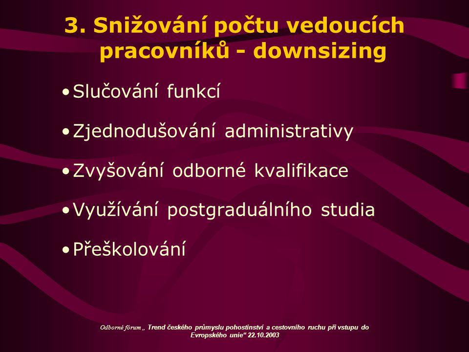3. Snižování počtu vedoucích pracovníků - downsizing Slučování funkcí Zjednodušování administrativy Zvyšování odborné kvalifikace Využívání postgraduá