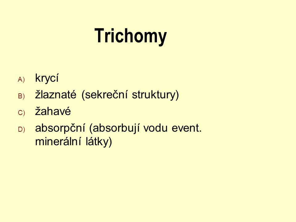 Trichomy A) krycí B) žlaznaté (sekreční struktury) C) žahavé D) absorpční (absorbují vodu event. minerální látky)