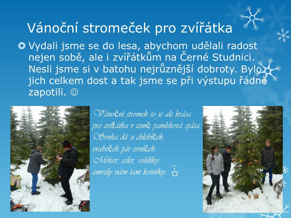 Vánoční stromeček pro zvířátka  Vydali jsme se do lesa, abychom udělali radost nejen sobě, ale i zvířátkům na Černé Studnici. Nesli jsme si v batohu